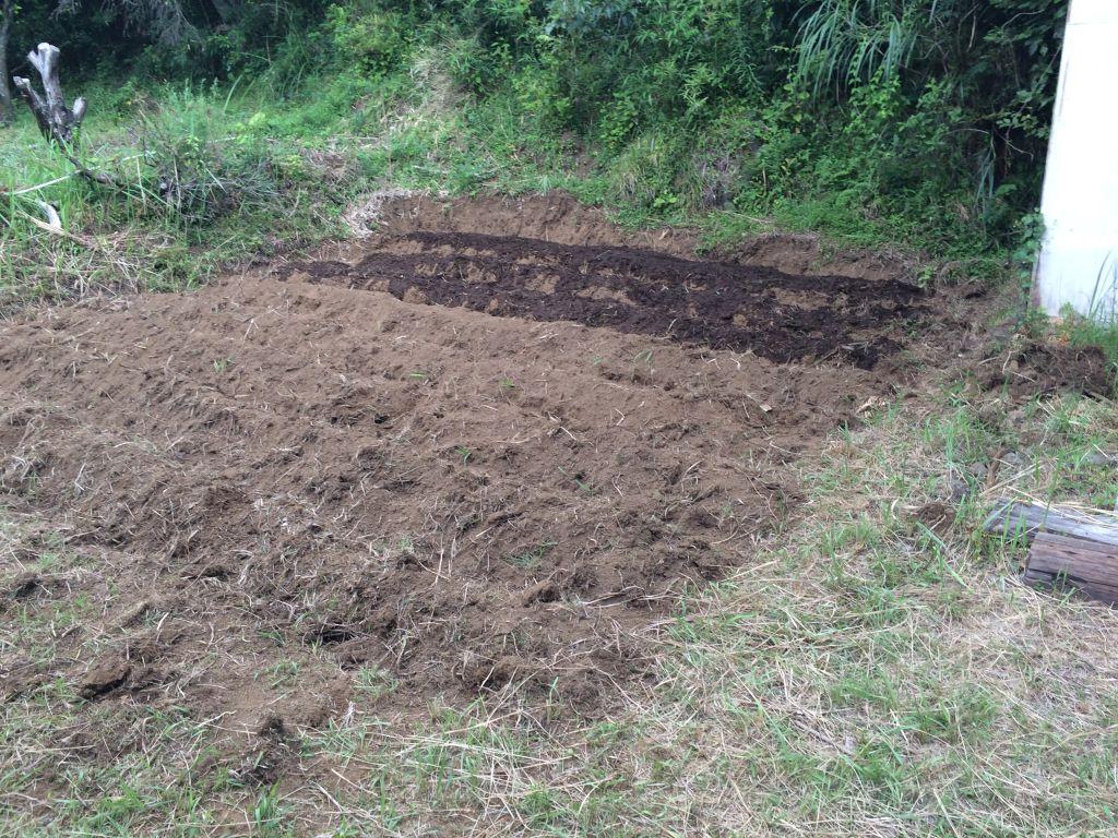 開墾した有機農エリア