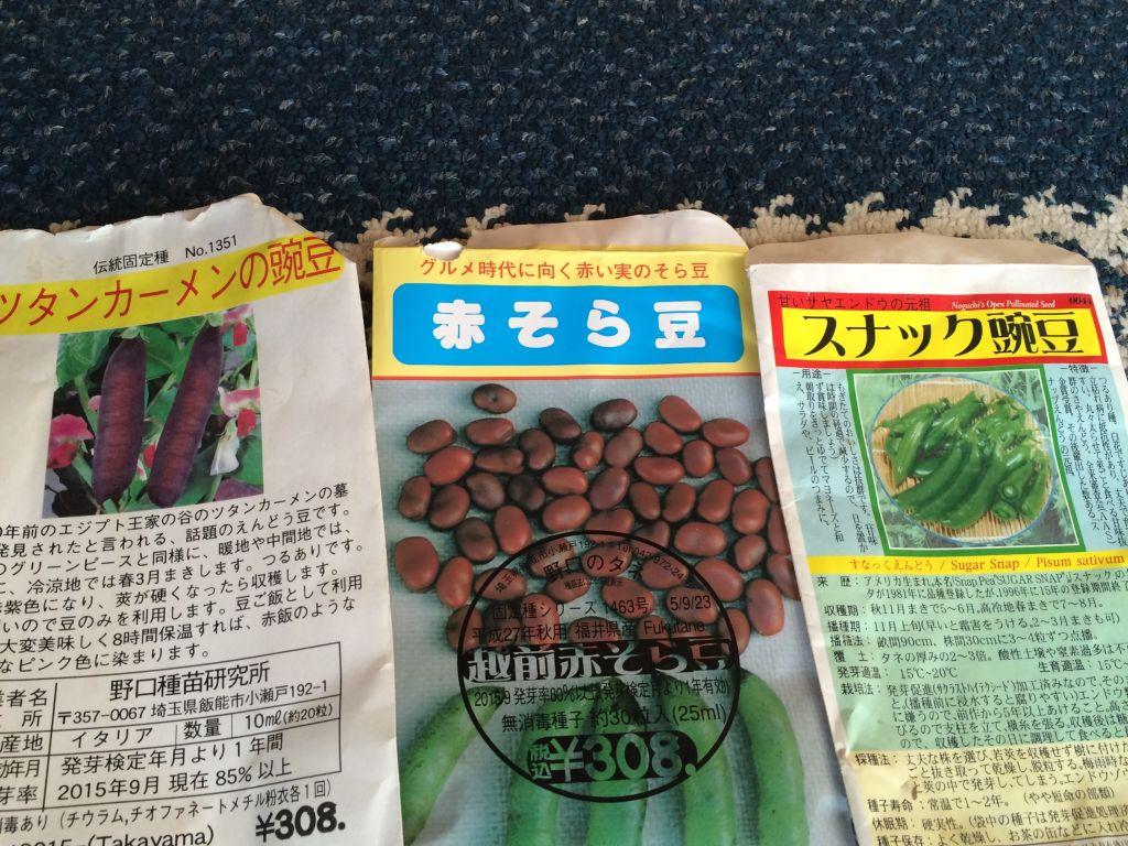 ツタンカーメン豌豆、赤そら豆、スナック豌豆