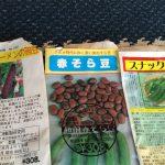 自然農の農作業(ニンニク、スナック豌豆、ツタンカーメン豌豆、赤そら豆の種降ろしなど)(2015/11/04)