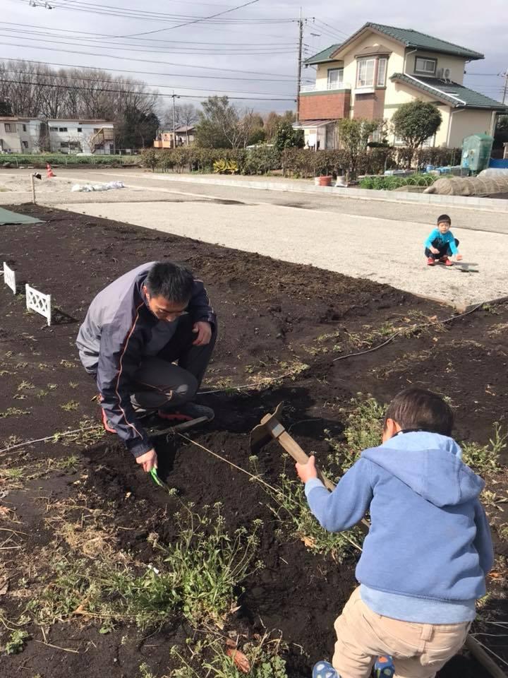 畝を作っています