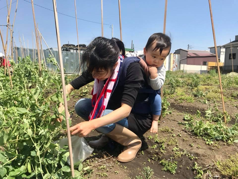赤ちゃんをおんぶして農作業