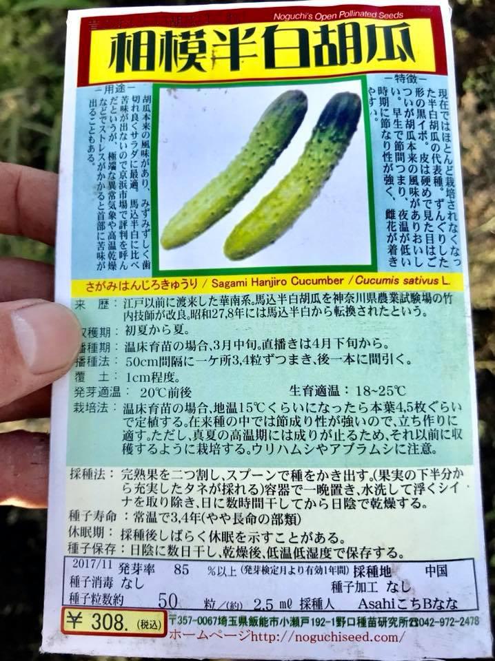 野口種苗さんで講習したきゅうりの種