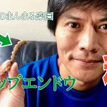【種採り スナップエンドウ】(2018/10/12)