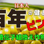 【ピンチ!日本人の健康が100年損なわれる? 遺伝子組み換え作物を学ぶ会】