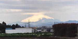 シャイニング富士
