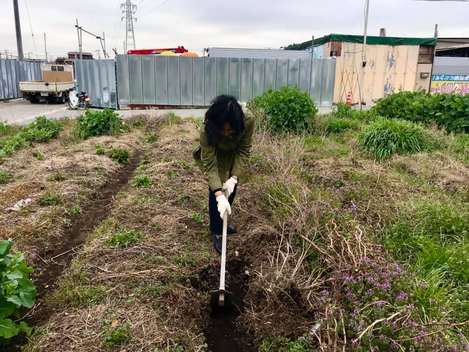 畝の整備をしているところ