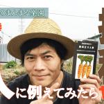 【自然農】自家採種を人類に例えてみたらヤバかった!人参の種を蒔きながら・・・(2019/03/06)
