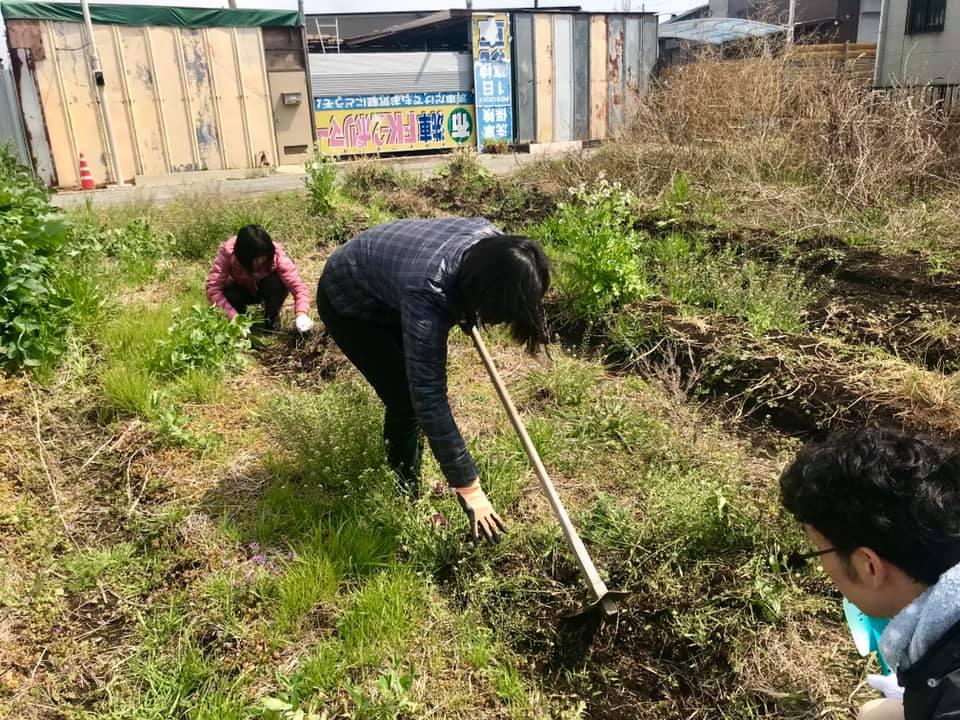 畝の整備をしているところ(3)