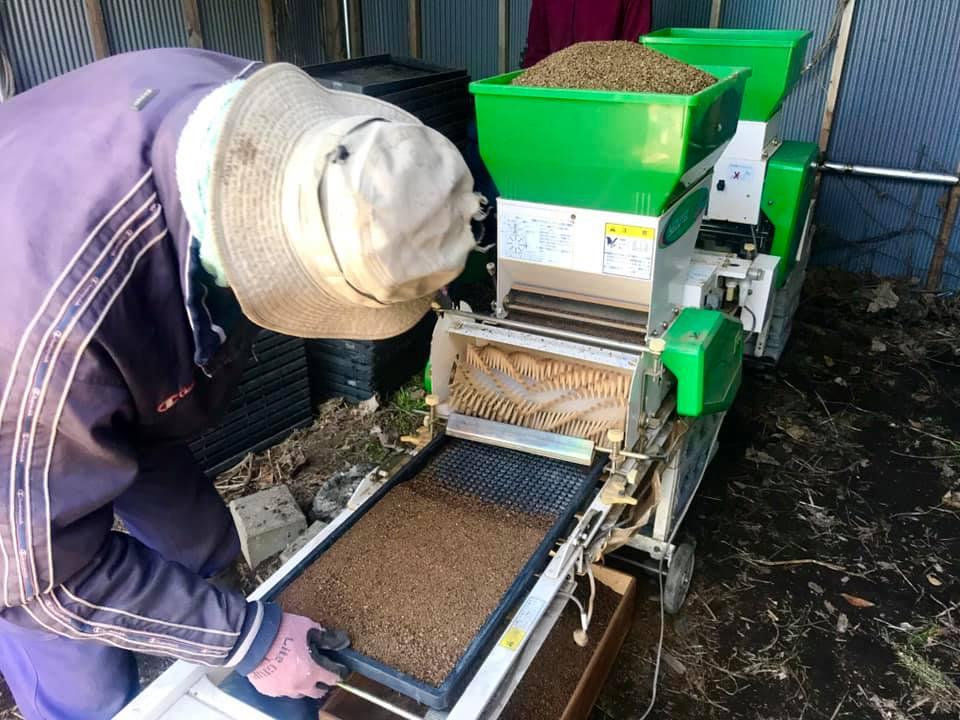 苗箱に機会を使って土を敷いている所