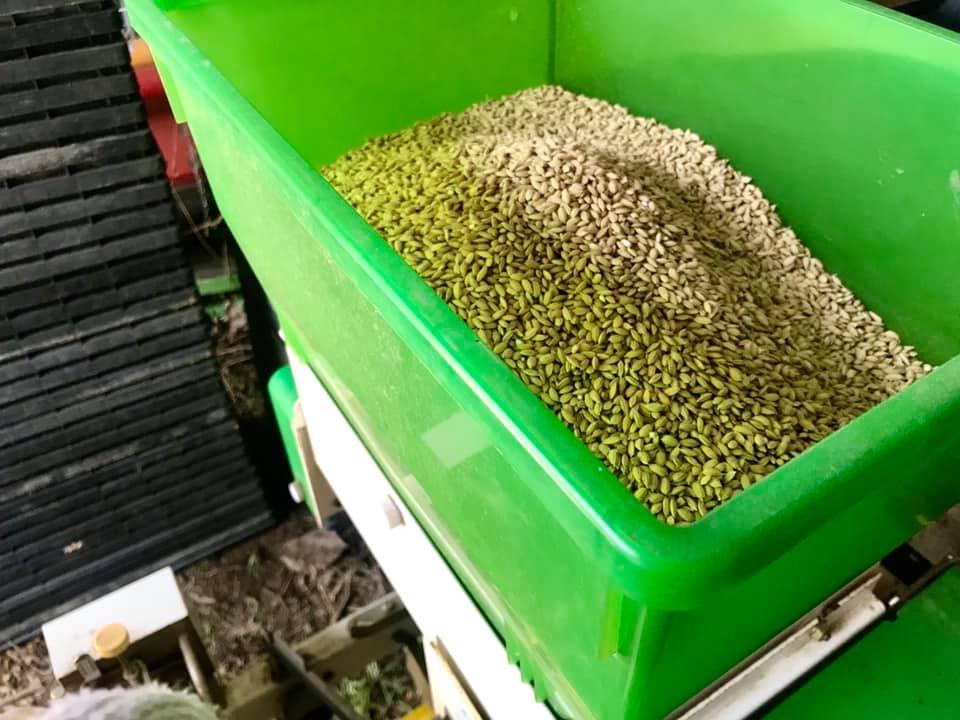 種籾をセットする箱