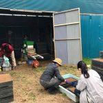 【苗づくり!稲作を学んでいます】(2019/04/17)