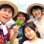 【かわいいお客様!スナップエンドウ収穫体験】(2019/05/02)