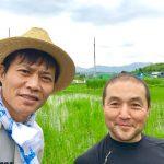 【稲作挑戦中】何が良かったの?草があまり生えない田んぼ(2019/07/11)