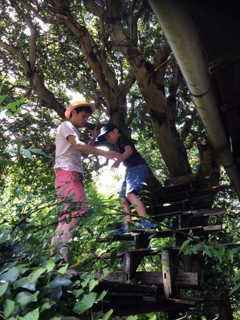 さらに恒例の木登り