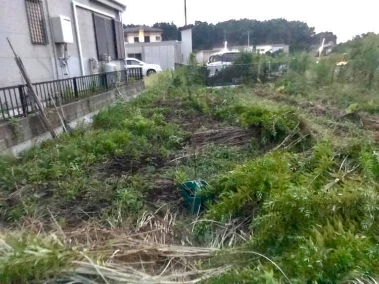草刈りして建設位置に棒を立てた所