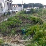 【貯水槽建設】設計微調整&草刈り(2019/08/26)