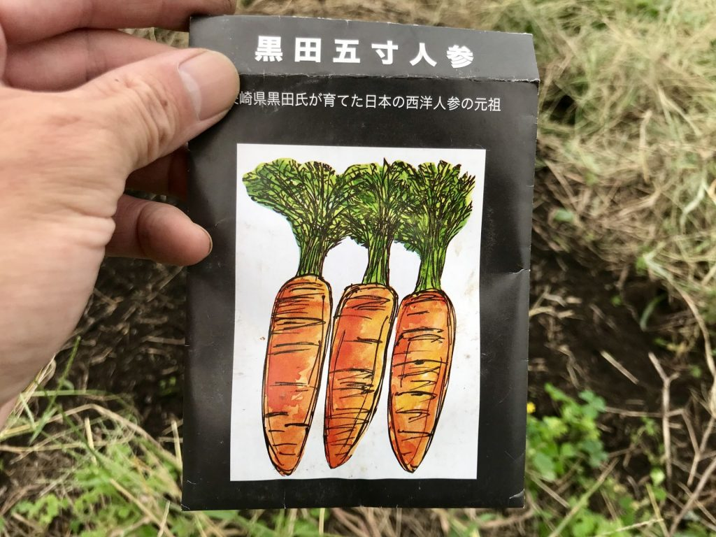 黒田五寸人参の種