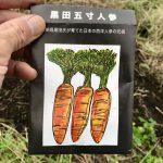 【自然農】人参の種をまきました。種採りできますように・・・(2019/09/14)
