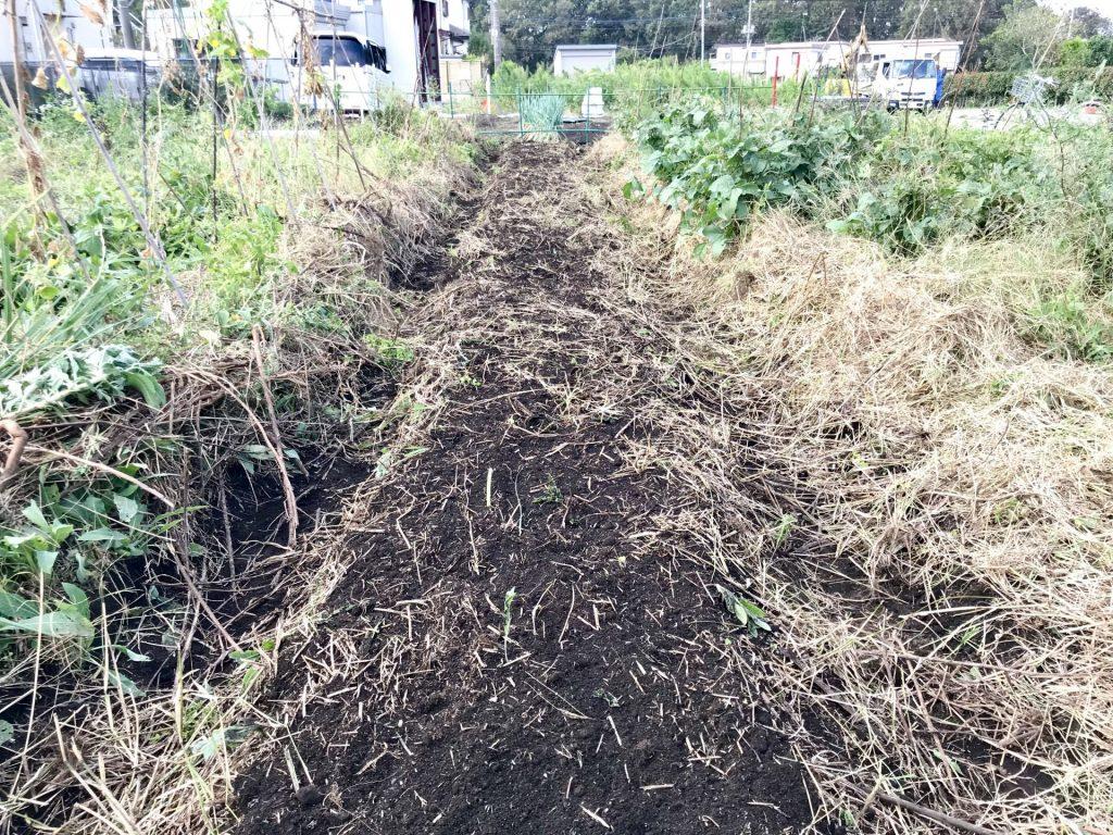 修復後の畝