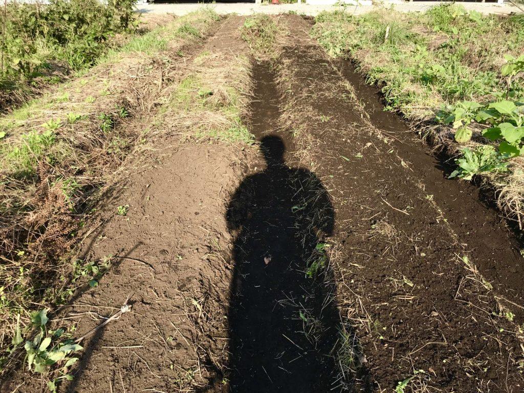 畝を修復し終わったところ