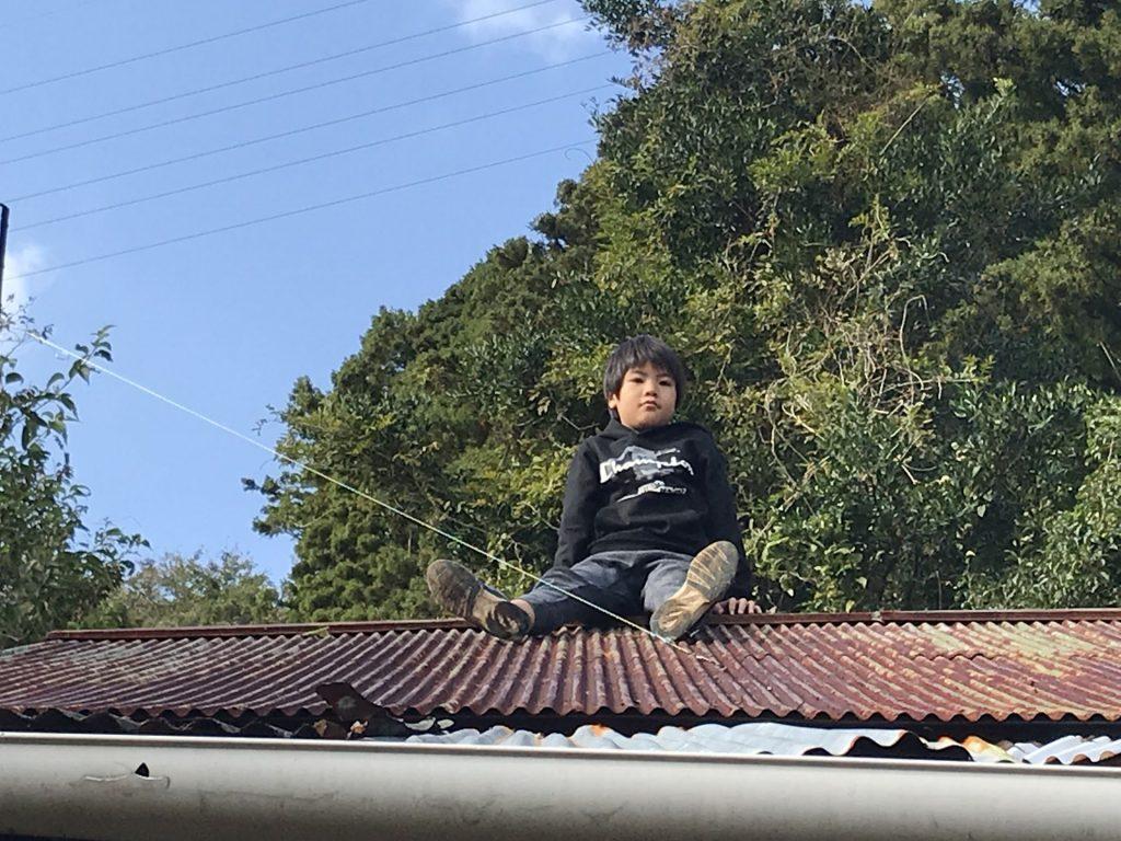 屋根の上で一休み♪