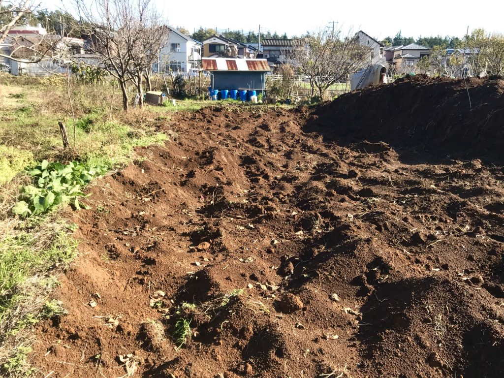 畑の北半分は土がむき出しの状態です。