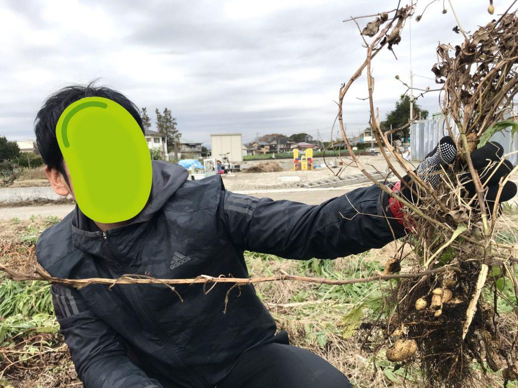 初の落花生収穫でこのリアクション!