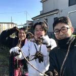 【自然農】体験イベント開催!ヤーコンを掘りました(2019/12/29)