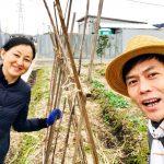 【自然農】支柱立ての実習をしていたら小鳥さんが(2020/01/24)
