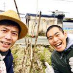 【自然農】支柱の立て方と鍬の使い方(2020/01/26)